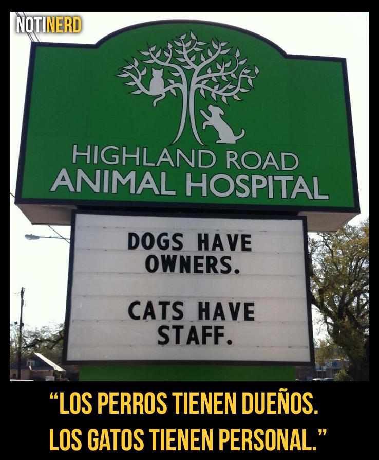 14 Carteles de veterinarias que te harán reír mucho